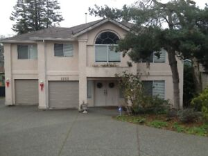 Furnished Basement Suite for rent - close to UVic