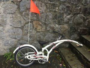 Used Trail-a-Bike $60