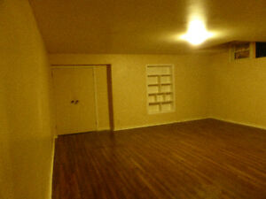Large one bedroom apartment for rent