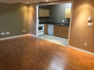 2 Bedroom Basement Suite (Westgate Area)