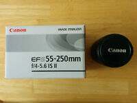 Canon EF-S 55-250mm for Canon or Sigma 50mm f/1.4