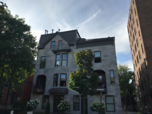 3 bedrooms available Jan 1st Mcgill Adjacent- High end furnished