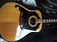 Fender Wildwood Acoustic Guitar