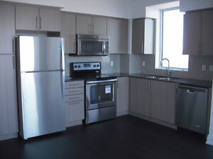 2 bedroom condo plus free wifi and cable TV