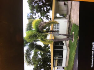 Largo Florida mobile home for rent $2,000 per month