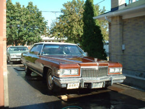 1975 Caddy - needs new home