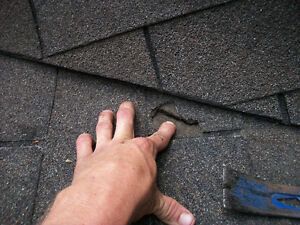 Roof repair and services , will your roof make it though winter! Peterborough Peterborough Area image 1