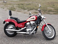 Honda Shadow Low Km    A Real Deal