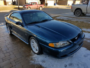 1996 GT Mustang - Low Mileage