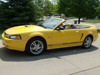 35th Aniversary Edition 1999 Ford Mustang Convertible