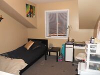 3 Rooms available in a 3 Room AC unit in a smaller newer buildin