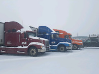 DEDICATED LOADS HOME EVERYDAY 0.55/MILE