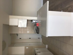 1 BR renovated apartment