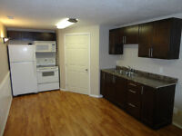 Newly Renovated Basement Suite - All utilities/tv/internet incl.
