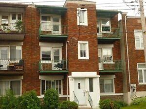 Appartement 3 1/2 à louer situé au rez-de-chaussée, Rosemont