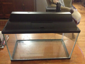 10 Gallon fish tank including filter, rocks,plants and ornaments