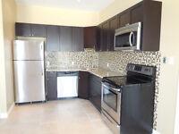 Luxury 2 Bedroom apartment for Rent in Elmira