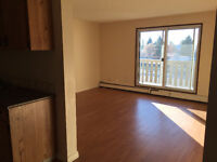 Renovated 1 bedroom on 23ave in millwoods with elevator