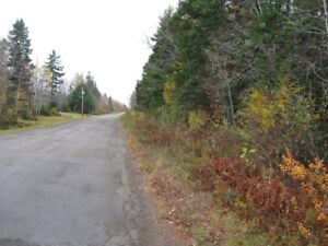 WOOD LAND FOR SALE WHITE SETTLEMENT RD COCAGNE ***REDUCE***