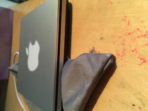 Apple Disk Port