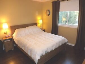 3+1 bedroom elevated bungalow - 98 Nicholson Cres, Amherstview Kingston Kingston Area image 6