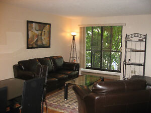 Furnished Condo for short and long term