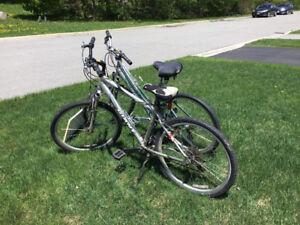 Two well cared for Comfort Bikes made by Giant.