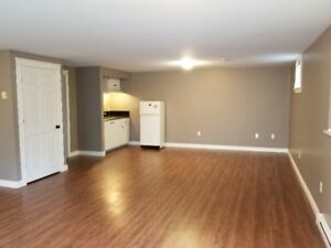 Newly built, Spacious 1 bd with large living room & parking