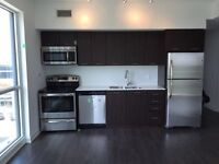 Brand new 2 bedroom condo for rent lakeshore downtown