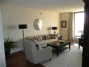 Large & Bright Apartment in the Heart of the City!