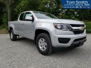 2019 Chevrolet Colorado WT  - $216.95 B/W