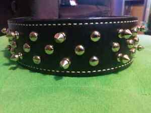 "2"" Premium  Spiked/Studded  ""Gladiator""  Leather Dog Collar  Sarnia Sarnia Area image 1"