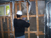 Mould and Asbestos Removal - Cheap Rates