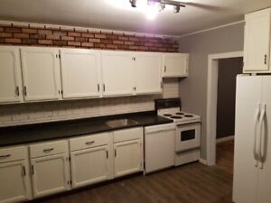 March 1st- Dog Friendly Home- 2 bedroom + Den- Fairview