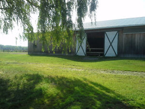 Looking for horse farm near Montreal ?possible revenue /private