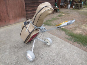 Golf cart and bag