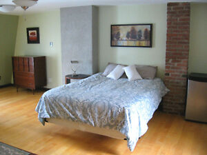 Elegant Furnished House in Downtown (Georgetown) Inclusive St. John's Newfoundland image 7