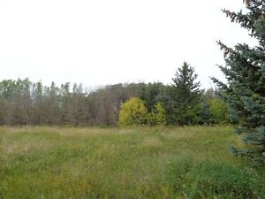 RM of Orkney 10 acre parcel with utilities 3 miles from Yorkton Regina Regina Area image 1