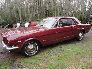 1965 Mustang Pony