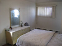 1 ½ Bachelor with stove and fridge Lachine available Jan 2016