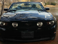 2010 Ford Mustang GT CONVERTIBLE  AUT. 62,000KM $21,995