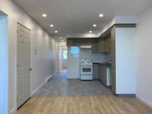 Gorgeous Newly Renovated 41/2 Mile-Ex - Laundry In-Unit