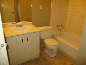 BEAUTIFUL ONE BED ROOM CONDO IN SOUTH CALL 519-673-9819 London Ontario image 3