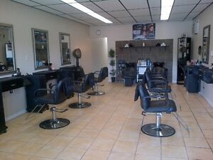 CHAIR RENTAL/ OPPORTUNITY RENT TO OWN BUSINESS Cambridge Kitchener Area image 1