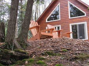 Winter Retreat Lakefront Log Cabin Cottage Rental
