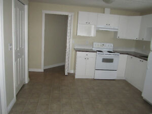 SPACIOUS ONE BEDROOM BASEMENT SUITE FOR RENT.ASAP