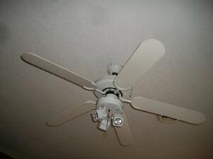 ventilateur 50 pouces