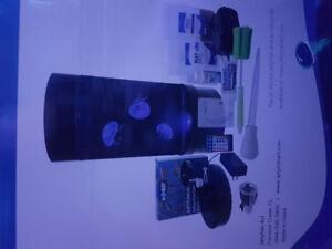 5 gallon jellyfish aquarium