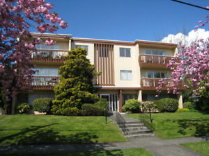 1 Bdr near Oak Bay Junction