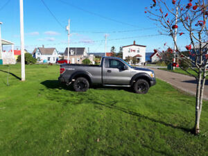 F150 truck for sale